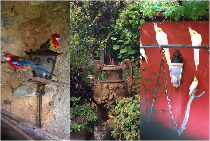 PicMonkey Collage.jpgjk